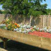 A raised wooden garden bed is filled with flowers of white orange and yellow in a fenced back yard. A large mature tree shades the yard with full green branches.